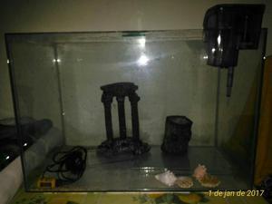 Aquario 70 litros com bomba e ornamentos.