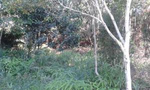 Terrenos em Biguaçú SC