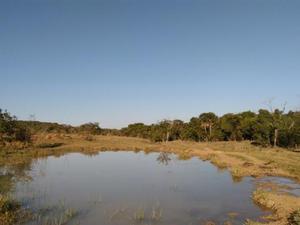 fazenda 150 hectares Uberlandia-MG