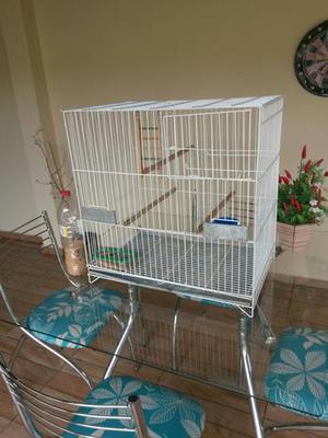 Linda gaiola de papagaio e calopicita.