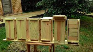 Caixa para abelha jatai modelo AF