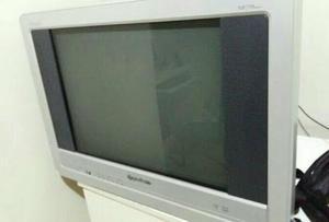 Tv Gradiente 21 Polegadas Tela Plana com rádio