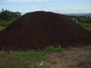 Terra preta para jardim com o melhor preço da região