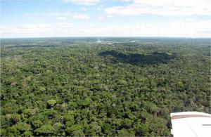 Fazenda de 118 mil hectares de manejo florestal no Acre