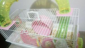 Gaiola de hamster completa