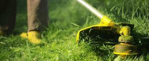 Jardineiro e Limpeza de terrenos com rocadeira