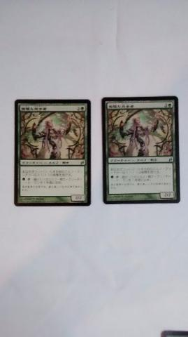 Magic the Gathering Mtg Lorwin 2x Perfeita Imperiosa Em