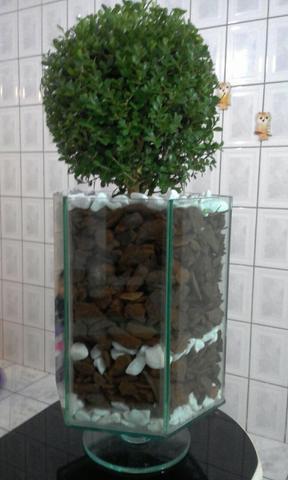 Cachepot de vidro