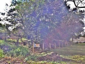 Terreno residencial à venda, Jardim Social, Curitiba -