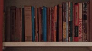 Livros Usados, 650 livros