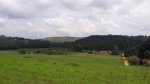 Grande Lançamento de terrenos próximos de Bragança