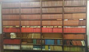 Estante para livros 4 metros por 2,5 metros. Madeira maciça