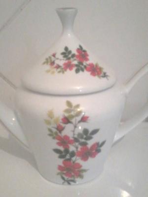 chaleira de porcelana