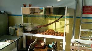 Vendo aquário 324 litros