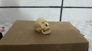 Anel skull