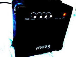Amplificador Moug 10 Watts