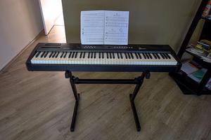 Piano Digital Fenix 88 SP-20