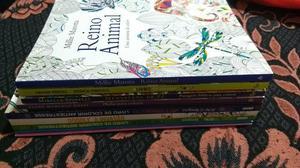 Lote com 10 livros de colorir