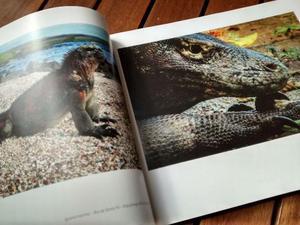 Livro de Fotografia - O Mundo Em Minas (capa dura)