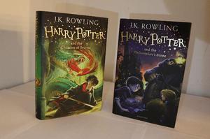 Harry Potter em ótimo estado