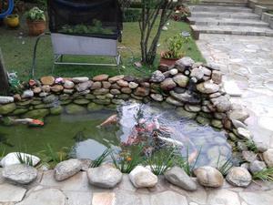 Reformas e manutenção de lagos ornamentais