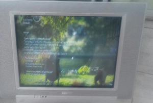 Tv philips 21 polegadas tela plana estado de nova