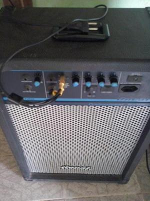 Caixa de som amplificada,grande