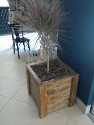 Vaso cachepot para plantas e arvores de natal