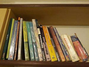 Dezenas de livros didáticos e dicionários do Ensino Médio