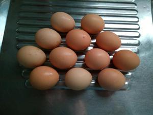 Ovos Índio Gigante