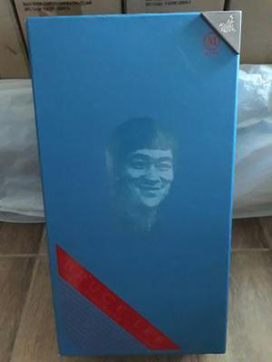 Hot Toys Caixa Vazia do Bruce Lee Casual