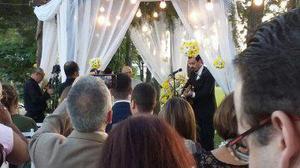 Lâmpadas bolinha para casamentos