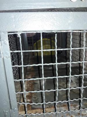 Gaiola por 150 para porquinho da Índia ou coelhos