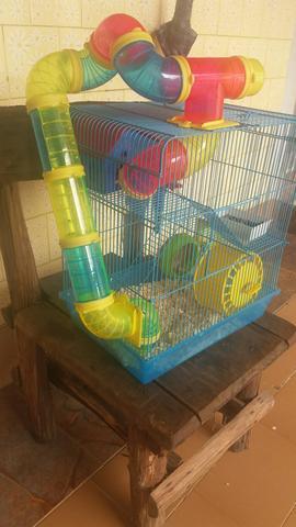 Hamster com gaiola completa