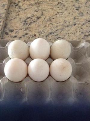 Ovos galados de Marrecos de Pequim