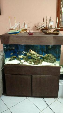 Vendo aquário marinho urgente