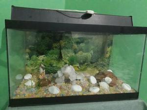 Vendo um lindo aquário de peixes