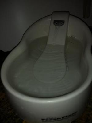 Bebedouro fonte agua Fresh Flow