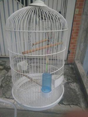 Gaiola de papagaio ou de calopsita