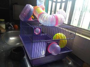 Gaiola hamster