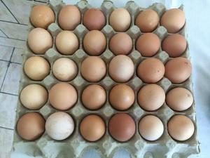 Ovos Caipiras (Anápolis)