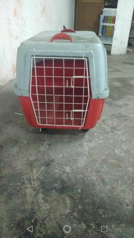 Transporte para animais número 5 em ótimo estado