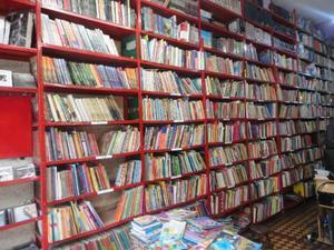 Lote de 4 Mil livros Infanto Juvenis Variados