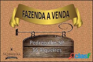 FAZENDA A VENDA PEDREGULHO (BAIRRO DO ESTREITO) - Fazenda a