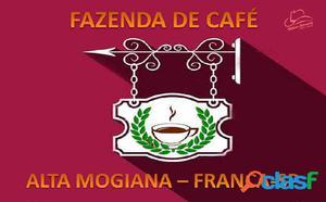 FAZENDA DE CAFÉ A VENDA EM FRANCA-SP - Fazenda a Venda no