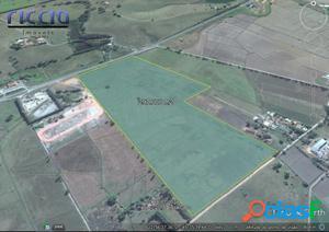Área 297.000 m² Plana na Rod. Floriano Rodrigues Tremembé