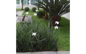 serviços de manutenção jardinagem