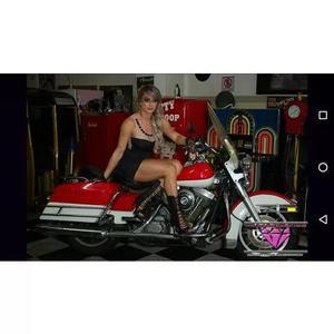 Harley Davidson Road King Police Classic Electra Glide Ultra