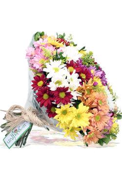 Flores para todo Brasil frete gratis
