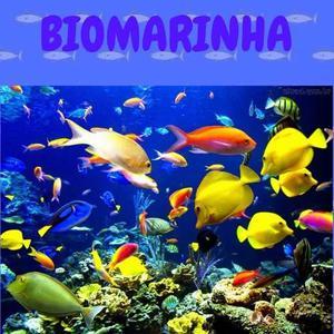 Biomarinha - Controle De Pragas E Manutenção De Aquários